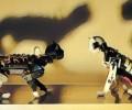 OpenCat:可编程的、AI加持的机器猫,基于Arduino和树莓派